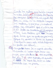 Short Essay Test 2 Las Medias