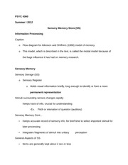 PSYC 4360 Notes on Sensory Memory Store