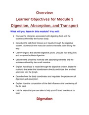 Module 3 Overview (1)
