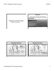 Lecture 11. Seagrasses Rocky Reefs and Kelp Forests 2016-BW.pdf