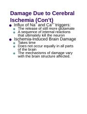 Damage Due to Cerebral Ischemia (Con't).docx