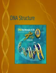 DNA structure Mcguire.ppt