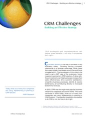 CRM_challenges