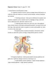 Respiratory_System_with_px