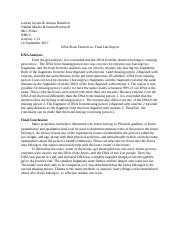 HBS Final Lab Report 1.3.1.docx