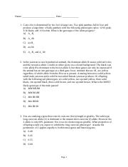Chapter 4 practice problems.docx