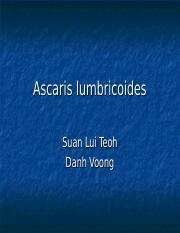 ascaris lumbricoides.ppt