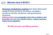 Lecture 9 Structure of globular proteins