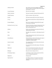 Anthropology - NotesChapter10.docx