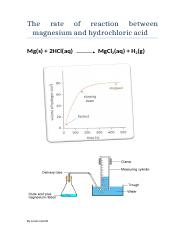 The rate of reaction between magnesium and hydrochloric acid.doc