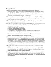 answers study questions 5