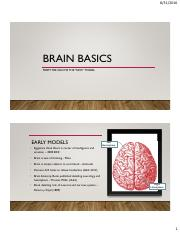 Brain Basics-From Old to New Models