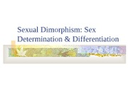 Psy137SexDifferentiation
