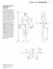 Kaplan Anatomy Coloring Book Chapter One: Introduction ANATOMICAL POSITION