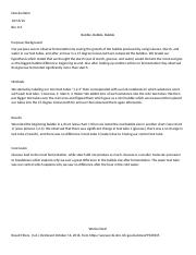 Mini Lab Report Fermentaion- Biology.docx