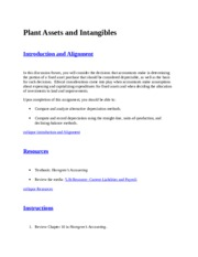 Plant Assets and Intangibles