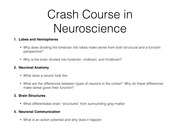 neuroscience_basics