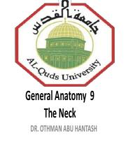 Lecture  9 The Neck
