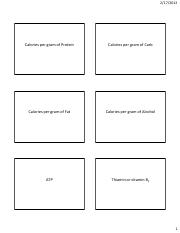 NTR 108: Energy Flash Cards for exam 2