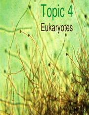Topic 4 Eukaryotes_for students