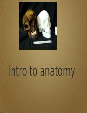 intro to anatomy copy ILearn
