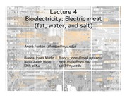 Lecture 4 Bioelectricity