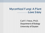Mycorrhizae+Overview