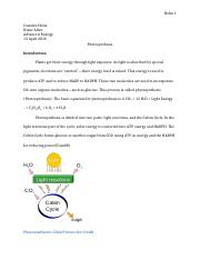Photosynthesis formal lab.docx