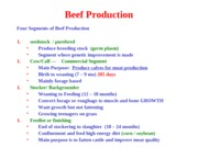 Lecture_8_beef_prod_student