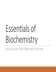 Essentials of Biochemistry - Nucleic Acids - LectureSlides(1)
