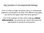2 Cellular Differentiation 1 Regulation