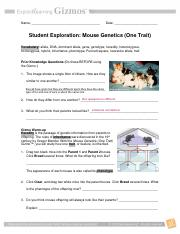 Activity B Genetics basics Get the Gizmo ready Click Clear ...
