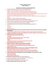 Grooms Chapter 26 Digestive System Chapter Objectives.docx