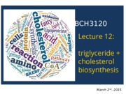 2015 - BCH3120 - Lecture 12-S