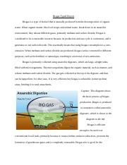 Biogas Typed Report.docx