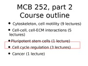 MCB 252 Embryonic Cell Cycle Lecture