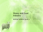 Sheep and Goat Industry