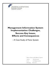 Management Information System Implementation Challenges, Success Key Issues, Effects and Consequence