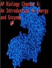 AP Enzymes.ppt