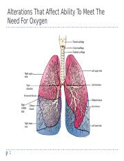 adult 2 respiratory care notes