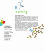 5 learning