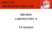 lab4-demoreview