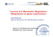10-2 Lecture 8-2 Metabolic Regulation