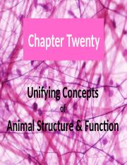Chapter 20-Unifying Concepts of Animal Structure