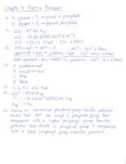 Chapter 4 Practice Problems KEY(1)
