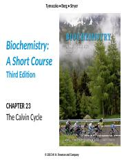 Chapter 23 Calvin Cycle lecture