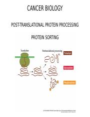 Cancer Biology Protein Sorting  copy