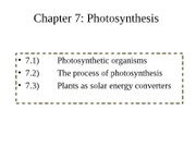 Photosynthesis%20%28chap0.%207%29