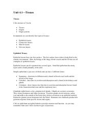Unit 4 Test Prep.pdf