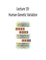 Lecture+19+_human+genetic+variation_.pdf